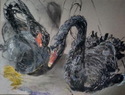 Andrea Newman  Black Swan Pair