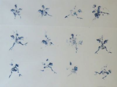 Chicks, Monoprint