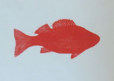 Red Perch,  Woodcut