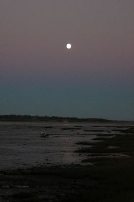 The Estuary at Night