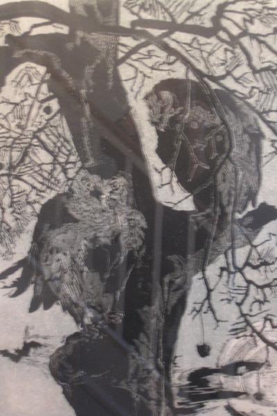 Owls 1955