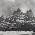 Little Skellig Rock from Skellig - NORMAN ACKROYD