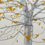 ALI MORGAN Spring - Summer - Autumn - Winter - Forty Tree Drawings Autmn 08