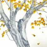 ALI MORGAN Spring - Summer - Autumn - Winter - Forty Tree Drawings Autumn 04