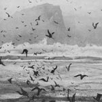 NORMAN ACKROYD Etchings, Paintings and Watercolours High Island Connemara