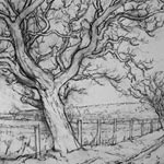 ALAN TURNBULL Etchings and Drawings Road across Barden Moor (2)