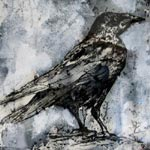 ALAN TURNBULL Etchings and Drawings Crow (Je suis Saint Esprit)