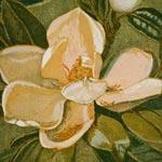 FLOWERS IN PRINT  Magnolias