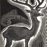 GERTRUDE HERMES Wood-engravings, Linocuts & Drawings Stag 1932