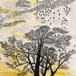GERTRUDE HERMES Wood-engravings, Linocuts & Drawings Starlings 1965