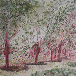NORMAN ADAMS RA (1927-2005) THE ESSENCE OF LANDSCAPE In the Ardeche - Cherry Trees